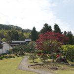 様々な樹木や花が植えられた広いお庭