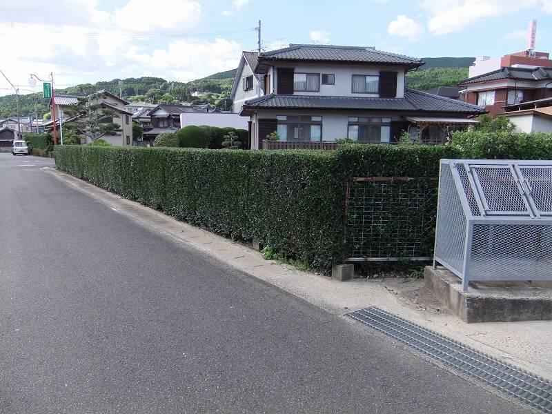 生垣剪定 緑化センターのサムネイル